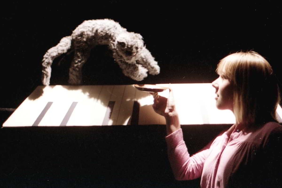 Jandy Malone and the Nine O'Clock Tiger, Handspan Theatre a piano keyboard and a cat against a black background