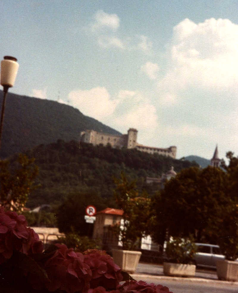 Italian medieval castle high on wooded rocky outcrop above town
