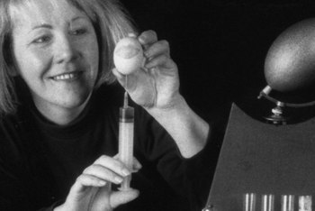woman injecting an egg at tabletop set with miniature laboratory equipment.